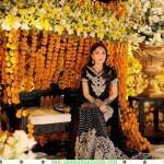 Sharmila Farooqi pics