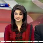 Ayesha Zulfiqar Hot Pics