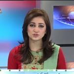 Ayesha Zulfiqar 2013
