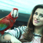 Madiha Naqvi with parrot